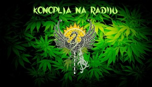 Konoplja na radiu